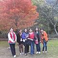 2010.11.19 奧萬大森林遊樂區 (16).JPG