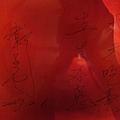 2008.11.01 非常素泰式料理 (12).JPG