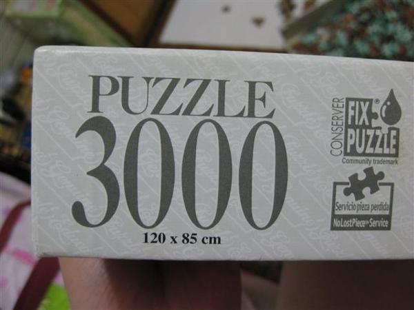 2009.05.03 巴黎音樂會3000片 (4).JPG