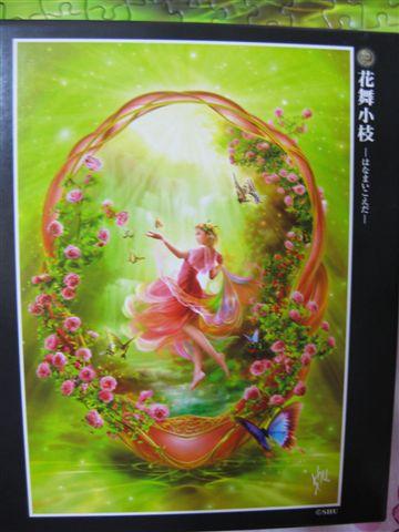2009.05.16 花舞小枝300片日製(from謎屋)_盒圖.JPG