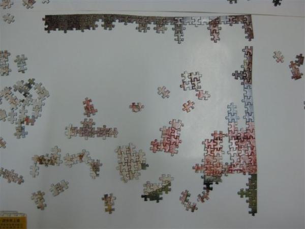 2009.06.27 達文西的秘密1000片mini, 46x30cm (6).JPG