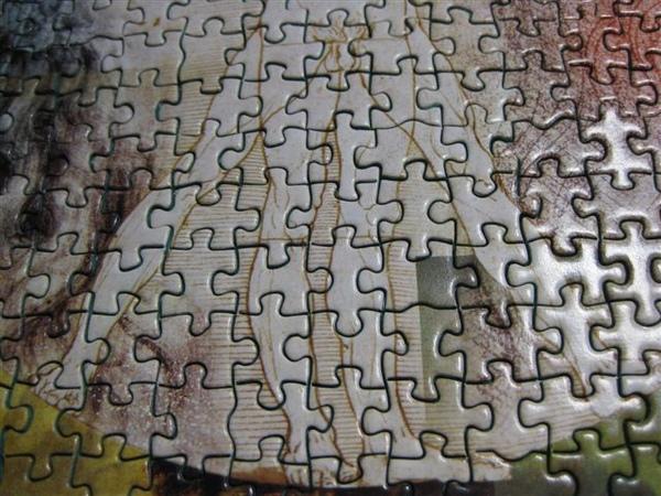 2009.06.27 達文西的秘密1000片mini, 46x30cm (70).JPG