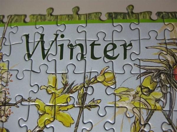 2009.12.01 1000片Flower Fairies_winter (3).JPG