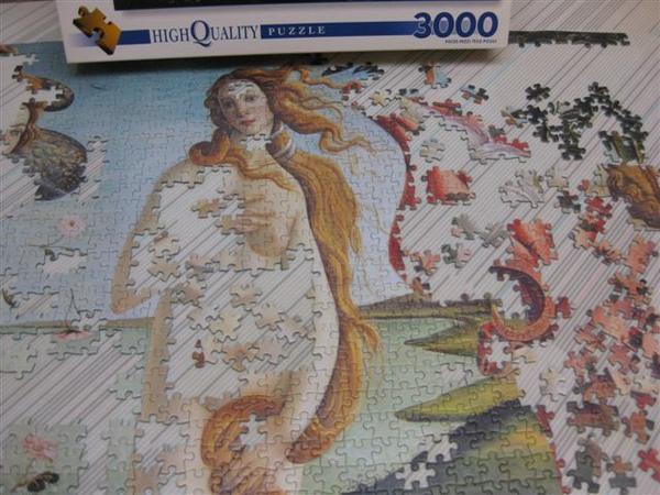 2009.12.01 3000片維納斯的進度 (6).JPG