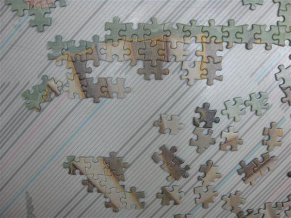 2009.12.01 3000片維納斯的進度 (8).JPG
