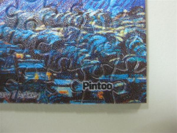2010.07.13 Pintoo XS 150片星夜, 1889 (15).JPG