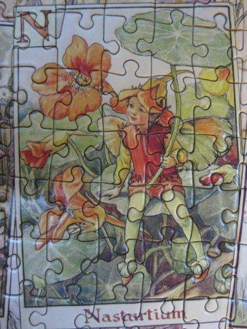 2010.10.11 1000片Flower Fairies Alphabet (17).jpg