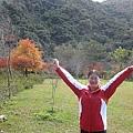 2010.11.19 奧萬大森林遊樂區 (23).JPG