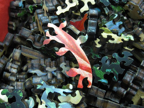 2010.08.17 Liberty Puzzles (27).JPG
