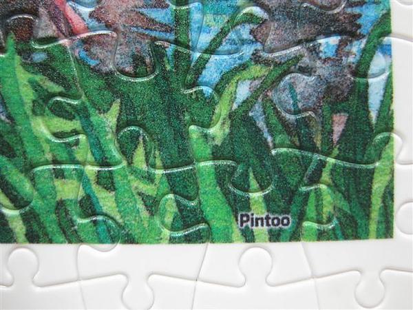 2010.07.14 Pintoo 300片划船 (10).JPG