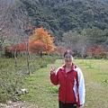 2010.11.19 奧萬大森林遊樂區 (21).JPG
