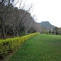 2010.11.19 奧萬大森林遊樂區 (41).JPG