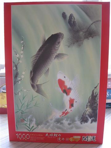 2010.08.02 Epoch 1000片鯉魚 (1).JPG
