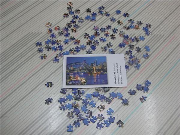 2010.07.04 150片悉尼港灣夜景 (1).JPG