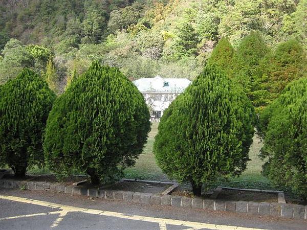 2010.11.19 奧萬大森林遊樂區 (3).JPG