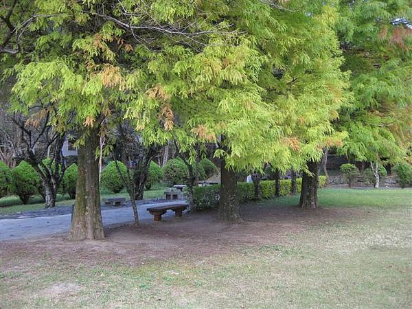 2010.11.19 奧萬大森林遊樂區 (32).JPG