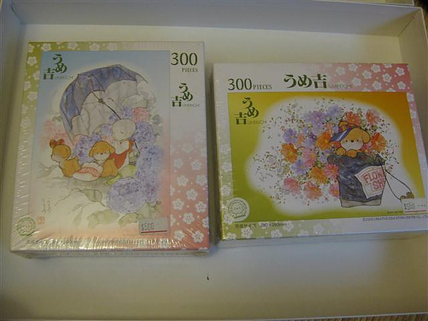 2010.07.27 露天賣家jp-puzzle寄來的包裹 (3).JPG