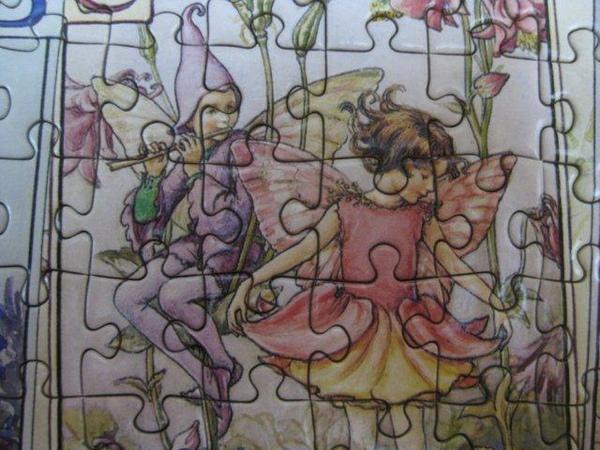 2010.10.11 1000片Flower Fairies Alphabet (33).jpg