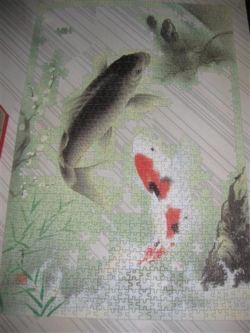 2010.08.02 Epoch 1000片鯉魚 (8).JPG