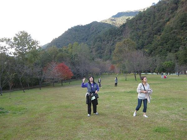2010.11.19 奧萬大森林遊樂區 (18).JPG