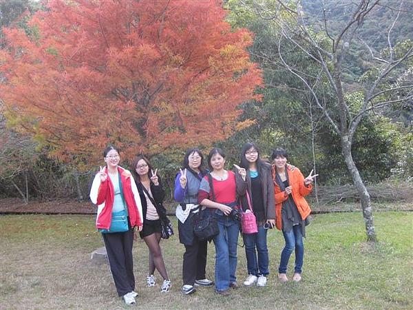 2010.11.19 奧萬大森林遊樂區 (17).JPG
