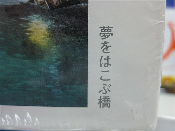 2010.09.08 300片引導夢的橋 (2).JPG
