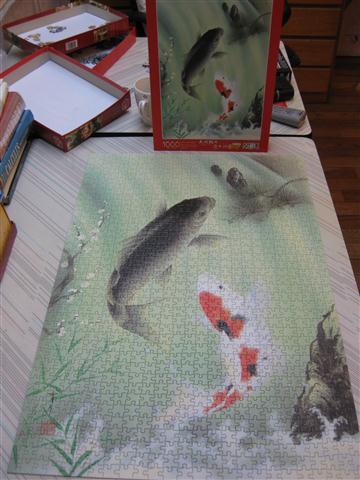 2010.08.03 1000片鯉魚 (5).JPG