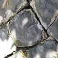 2010.07.03 新北投_地熱谷_壁牆上的硫磺結晶.JPG