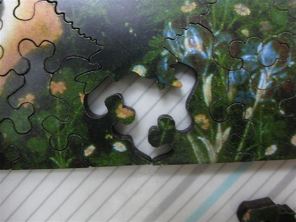 2010.08.19 681片Primavera 開拼 (25).JPG