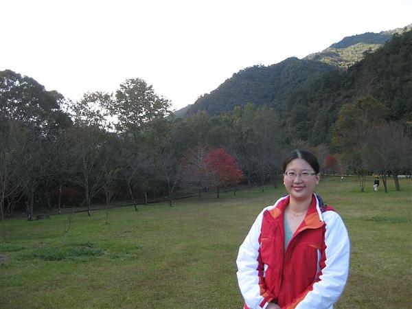 2010.11.19 奧萬大森林遊樂區 (19).JPG