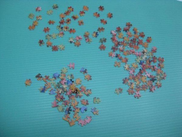 2010.12.08 150 pcs 紅貴賓與泰迪熊 (2).jpg