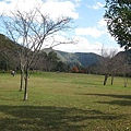 2010.11.19 奧萬大森林遊樂區 (12).JPG