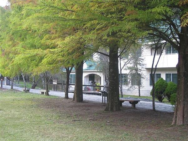 2010.11.19 奧萬大森林遊樂區 (28).JPG