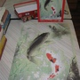 2010.08.02 Epoch 1000片鯉魚 (9).JPG