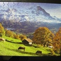 2010.08.29 150片Alpes Berneses, Suiza (7).JPG