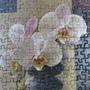 2010.11.25 1000 pcs Peace and Harmony (11).jpg