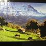 2010.08.29 150片Alpes Berneses, Suiza (6).JPG