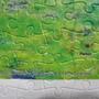 2010.10.17 500 pcs 莫內 - 亞嘉杜的紅帆船 (13).jpg