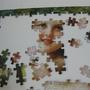 2009.06.07 採櫻桃的女孩The Cherry Picker 500片 (4).JPG