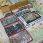 2009.11.28-29 3000片維納斯的[戰場] (1).JPG