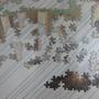 2009.12.10 維納斯的進展 (8).JPG