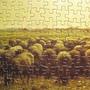 2010.03.16 米勒300片牧羊女 (12).JPG