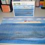 2010.03.25 300片鯨魚的假期 (7).JPG