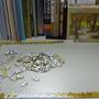 2010.03.30 532片蕭蕭的秋月.JPG