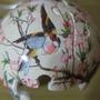 2010.05.23 24片鳥語花香 (10).JPG