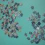 2010.12.07 150 pcs 秀拉-大碗鳥的星期日下午 (2).jpg