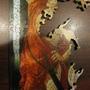 2010.08.19 681片Primavera 開拼 (44).JPG