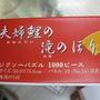 2010.08.02 Epoch 1000片鯉魚 (10).JPG