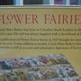 2010.10.08 1000 pcs Flower Fairies 英文字母 (3).jpg