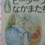 2010.08.31 6盒露天拼圖 _彼德兔文宣 (4).JPG